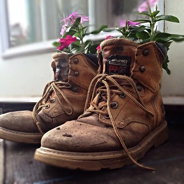 Grow something strong this season #timberland #flowers #summer #spring