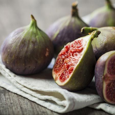 Huge Harvest from a Small Space - If you love delicious, healthy treats...Fresh figs are a natural choice! Now with the addition of 'Little Miss Figgy', you won't need a great deal of space to harvest an abundance of luscious 'figgy' fruit. This incredible plant will dazzle you with its deeply lobed, blue-green leaves and...