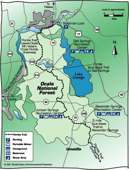 Holiday Florida Map.Ocala Nationa Forest Map Travel Pinterest Ocala National
