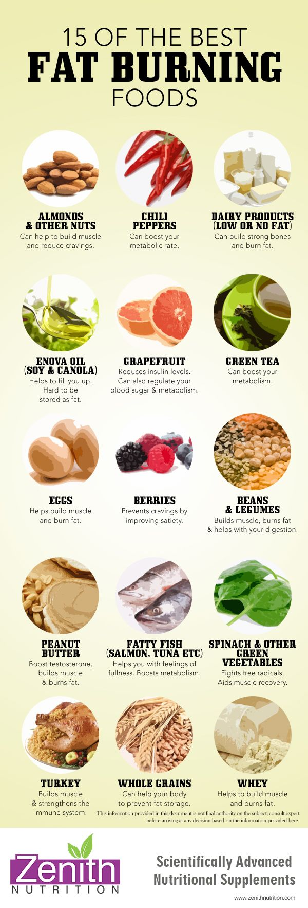 Best Fat Burning Foods. Almonds, Chilipeppers, Low fat dairy products, Enova oil, Grape fruit, Green tea, Eggs, Berries, Beans & legumes, Peannut butter, Fatty fish, Spinach, Turkey, Whole grains, Whey. Best supplements from Zenith Nutrition. Health Supplements. Nutritional Supplements. Health Infographics