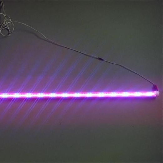 ==> [Free Shipping] Buy Best 2FT/3FT/4FT/5FT/6FT/8FT red blue T8 Led Plants Lamp Growth Tube Light 0.6M-2.4M 10W-40W SMD2835 100PCS/LOT Online with LOWEST Price | 32659673848