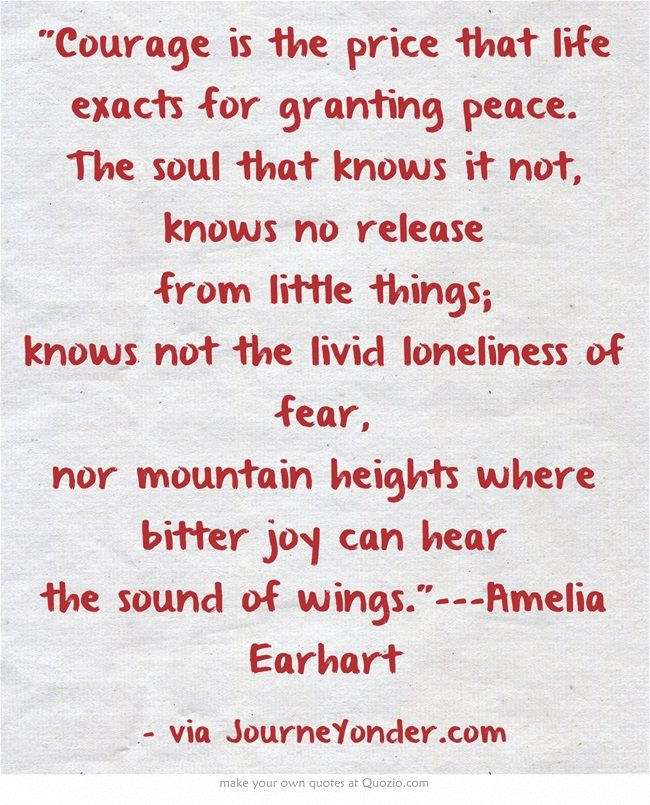 The 25+ best Amelia earhart quotes ideas on Pinterest Amelia - price quotations