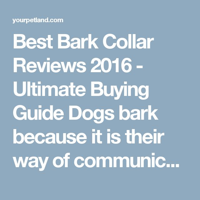 "Best Bark Collar Reviews 2016 - Ultimate Buying Guide Dogs bark because it is their way of communicating and it is their natural behaviour. Dogs start barking for many different reasons and, while the majority of us would like our own dogs to be ""Watchdogs"" and alert us to anything out of the ordinary, we don't want nonstop barking all day long."