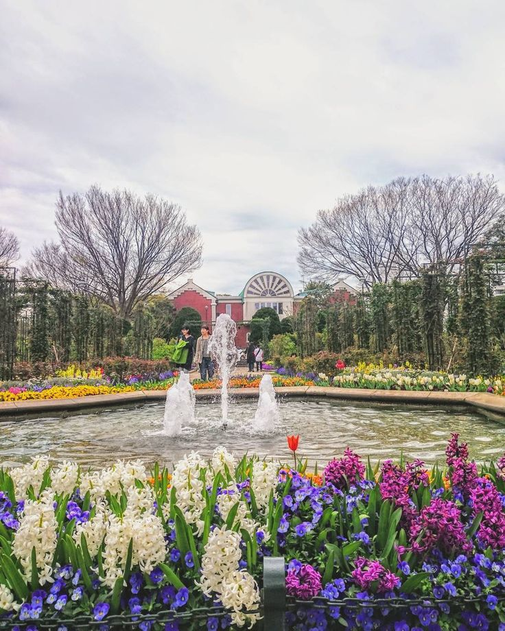 キャラに無い花壇ものその  #港の見える丘公園  #空 #花 #ダレカニミセタイソラ #写真好きな人と繋がりたい #写真撮ってる人と繋がりたい #photo #japan #landscape #日本 #風景 #instagram #igers #igersjp #igで繋がる空 #sky #skylovers #skyporn #skypainters #skyscraper #flowers #floralphotograph #flowerporn #flowerstagram #flowerlovers  #photooftheday #instasky #instagood  #全国都市緑化よこはまフェア #ガーデンネックレスヨコハマ2017