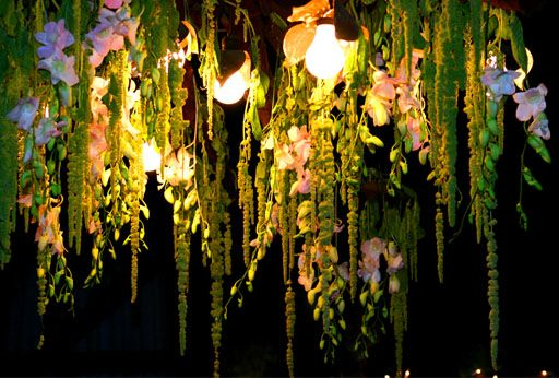 Hanging amaranthus evokes the Spanish moss often seen in the south