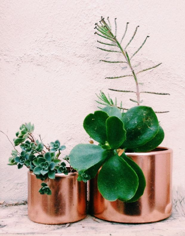 upcycled copper planters. I have these exact tins from my Grandma. Would be fun to put plants in them!