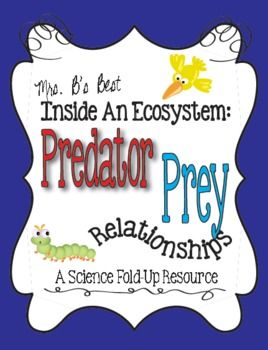 predator prey relationship within the ecosystem