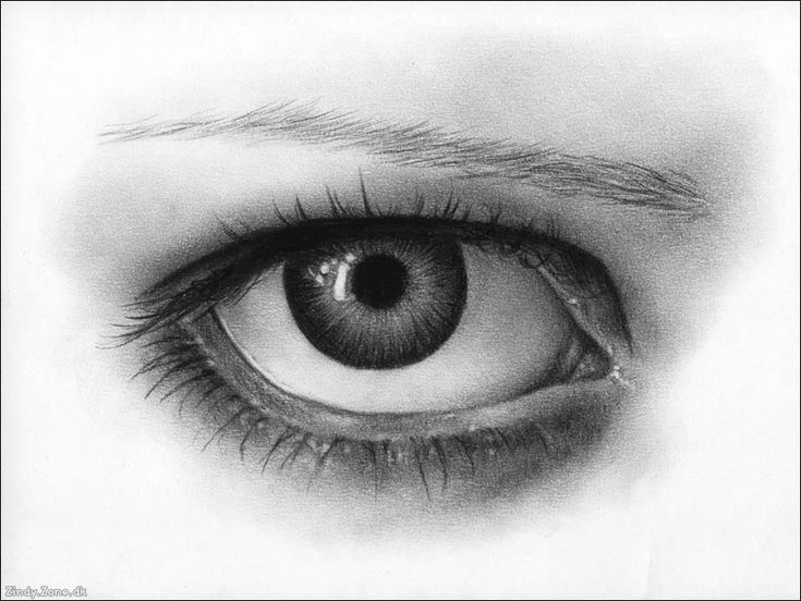 Scribble Eyes Drawing : Amazing pencil draw from web an eye i am done and tutorials