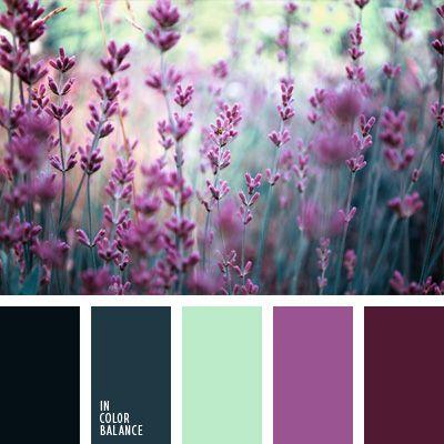 aberenjenado, azul aciano pálido, color aciano apagado, color campo de lavanda, color lavanda, color lila, color rosa aberenjenado, color verde azulado, de color violeta, elección del color.
