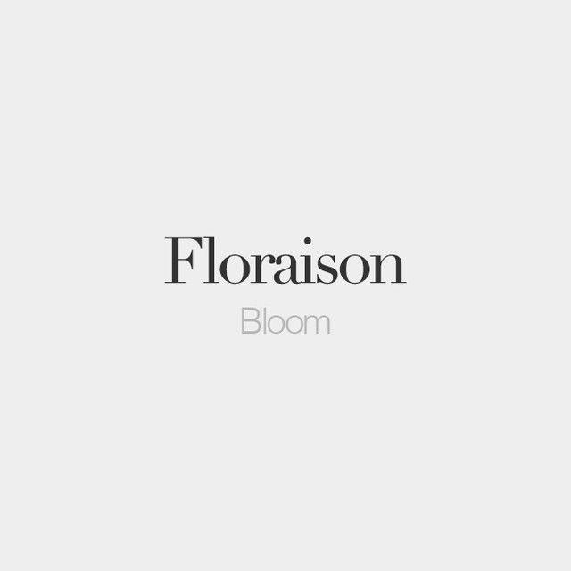 Floraison (feminine word)   Bloom   /flɔ.ʁɛ.zɔ̃/