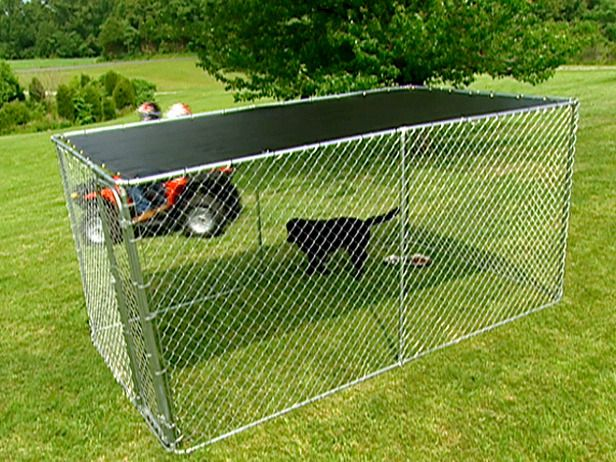 78 Best Images About Dog Scaped Yards On Pinterest For