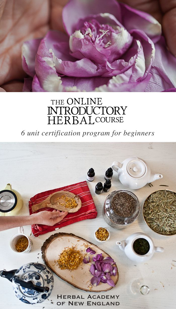 Buying chinese herbs online - The Affordable Online Self Paced Introductory Herbal Course Gives Beginners An Herbalism Foundation Teaching Herbal Remedies Tinctures And Body Care