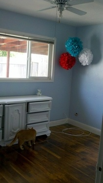 Love the pom poms - good for Seuss nursery. colours to match the stripes on wall?