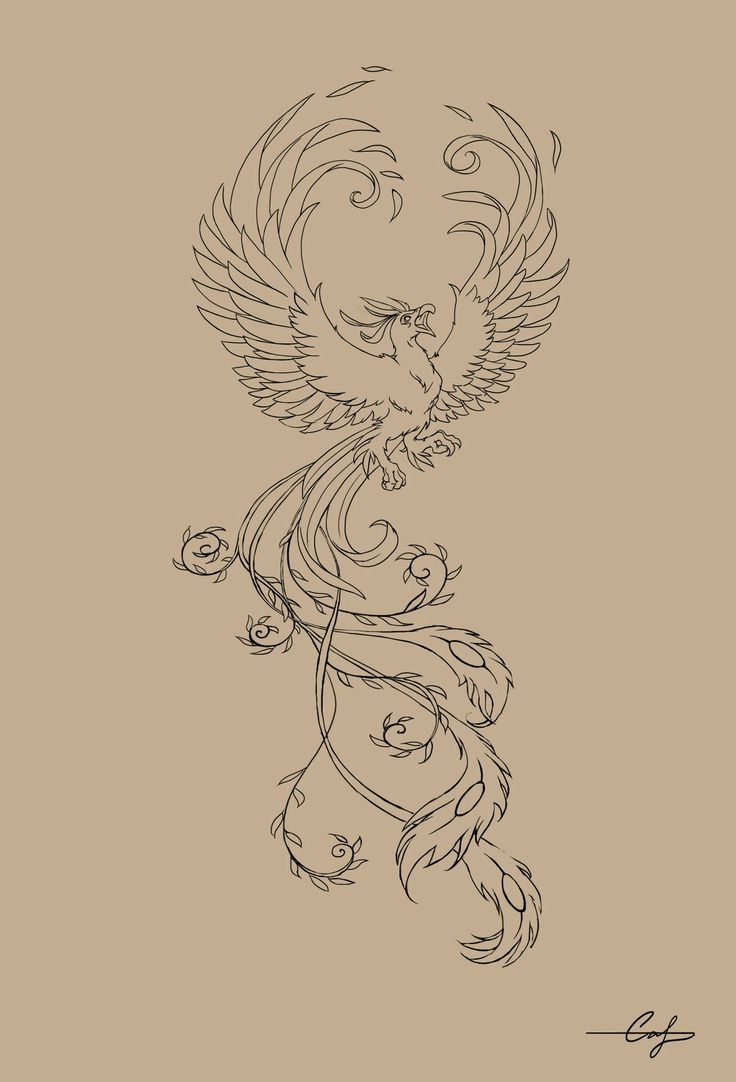 """the phoenix, actually spelled """"phenix"""" in middle english, is a greek mythological creature that represents rebirth. it is reborn from its ashes when it dies."""