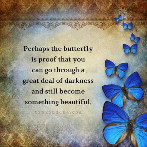 What does a butterfly mean to you?