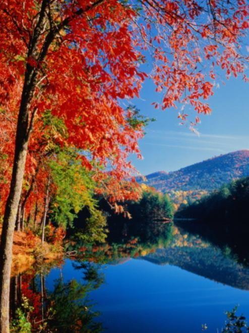 helen ga photos   Cabin Rental In Helen GA: Fall In Love ...
