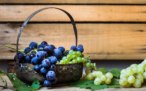 csendélet gyümölcs gyümölcskosár szőlő