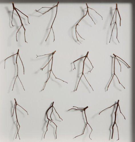 Twelve Twigs - Details by Chris Kenny