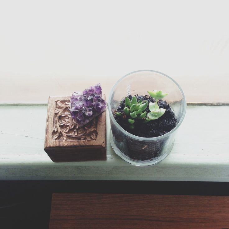 Made a mini succulent garden in my old glasshouse candle jar http://instagram.com/p/qOArQ_nMPn/