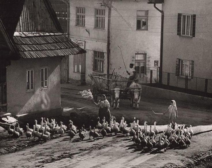 Martin Martinček - Ráno v Liptovskej Tepličke-1958–1962
