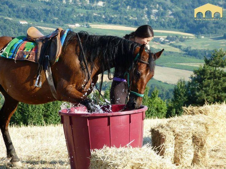 Passeggiate a #cavallo e giochi d'acqua Luglio 2013 #tenutaneri www.tenutaneri.com