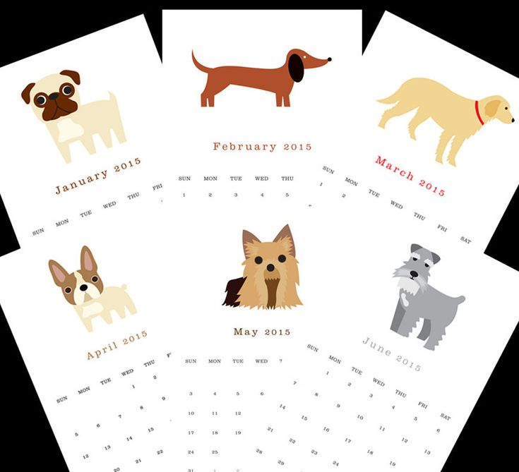 Dog Calendar Ideas : Ideas about calendar for on pinterest
