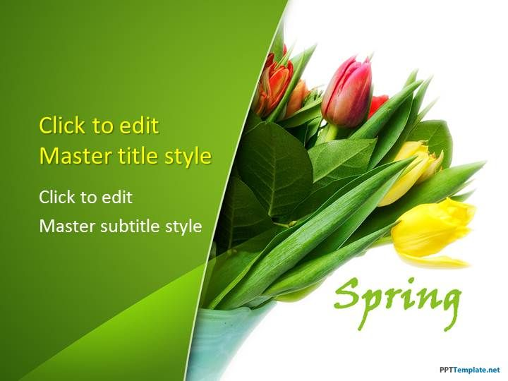 Free Flower Tulips PPT Template for spring break PowerPoint presentations #PowerPoint