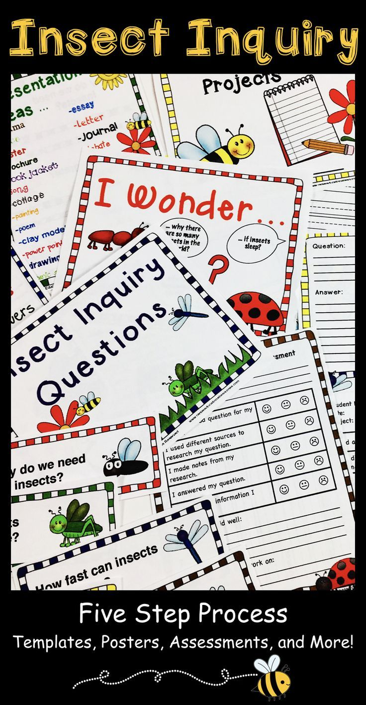 The Insect Inquiry Project package is a great way to support 1st, 2nd, 3rd grade and home school students as they begin learning about the inquiry process or as a way to practice using inquiry based learning. Use this five step process during a unit in any subject area! Great for English language arts, science, writing, centers, stations, group work, projects, research, and more! Get your class asking questions, brainstorming, and learning! (first, second, third graders, ELA)