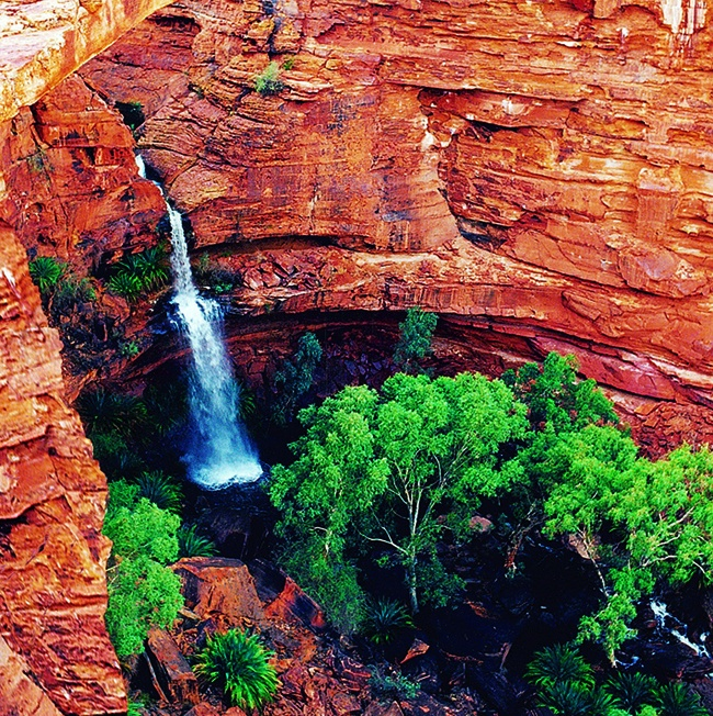 Kings Canyon, Australia.The waterfall leads to a beautiful swimming hole kown as the Garden of Eden. You walk for hours and see nothing but red rock and then you are lead to this!! It took my breath away...and i swam for what felt like an eternity.
