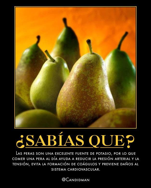 Salud.SabiasQue Las Peras son una excelente fuente de Potasio, por lo que comer una pera al día ayuda a reducir la PresionArterial y la Tension, evita la formación de Coagulos y previene daños al SistemaCardiovascular.
