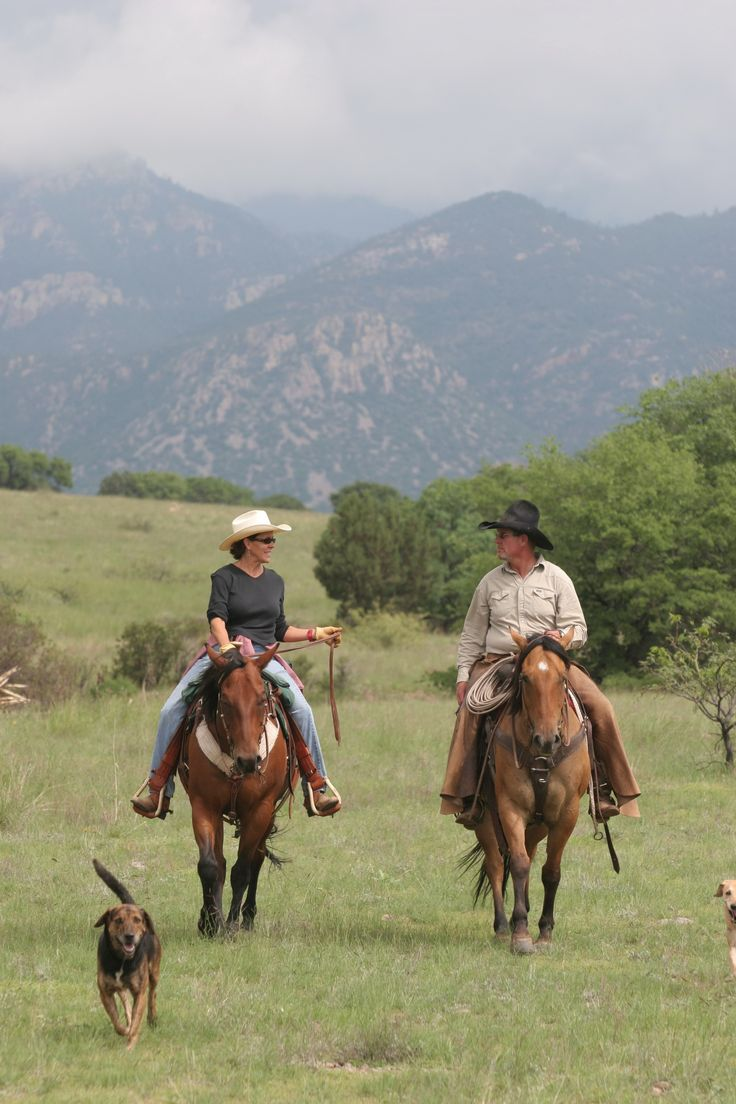 40 Tips for the Trail Rider – America's Horse Daily | America's Horse Daily
