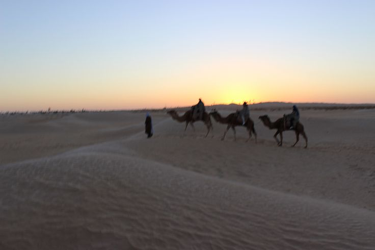The Sahara and friends in the distance - sun starting to rise.