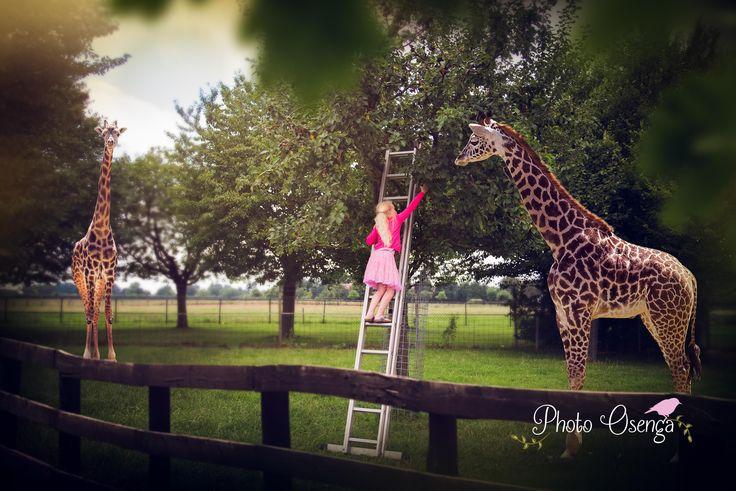 Composite between giraffes - Fairytale shoot by Photo Osenga