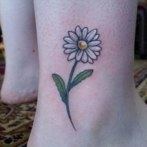 Little Daisy Flower