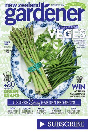 Subscribe to NZ Gardener