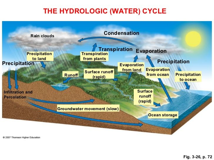 biogeochemical cycles important to environmental science The national climate assessment summarizes the impacts of climate change on the united states,  altered biogeochemical cycles combined with climate change increase the vulnerability of biodiversity, food security, human health, and water quality to a changing climate  an important characteristic of reactive nitrogen is its legacy once.