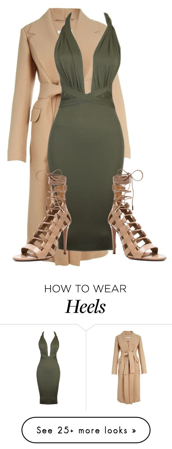 """""""Untitled #2894"""" by xirix on Polyvore featuring Carven and Aquazzura"""