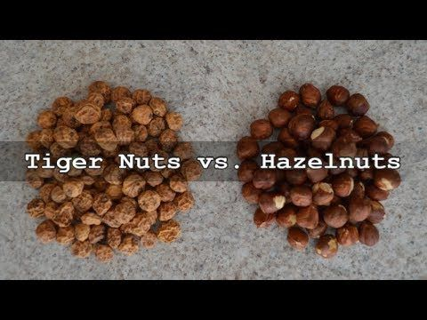 Find out why #TigerNuts kick #Hazelnuts butt in a head-to-head #nutrition battle! #nutfree   Tiger Nuts are available online: http://TigerNutsUSA.com   * Subscribe to Cooking With Kimberly - http://cookingwithkimberly.com #cookingwithkimberly