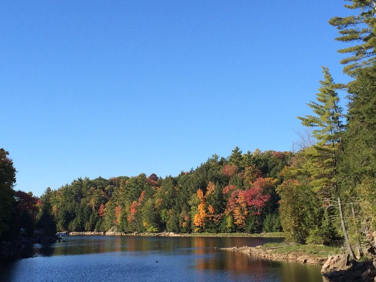 #Leafpeepers will be rewarded with these scenic views in Northern #Ontario. #FallColors #MyHaliburtonHighlands