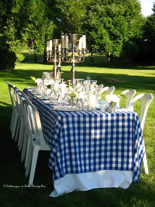Blue & White: Wedding Breakfast, Alfresco, Camps Dinners, Tables Sets, Summer Wedding, Summer Bbq, Dinners Parties, Blue Gingham, Summer Time