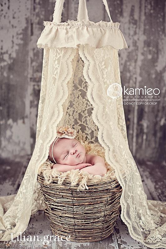 .: Photos Ideas, Newborns Photos, Lace Curtains, Lace Canopies, Photos Props, Newborns Canopies, Newborns Photography, Photography Props, Photography Ideas