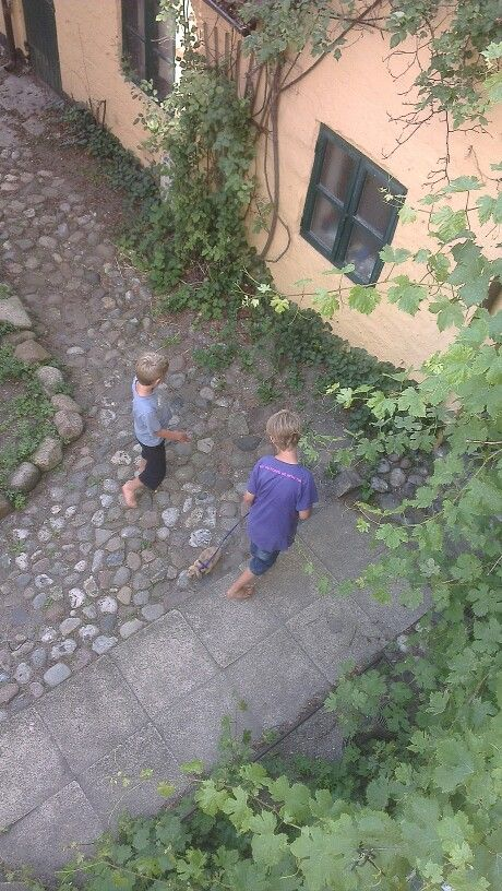 Kids and bunny in the garden.