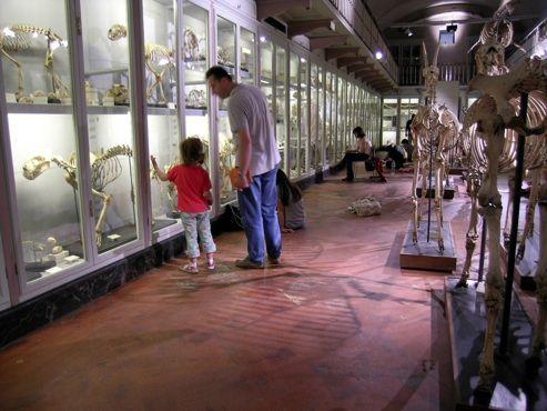 Firenze città d'arte: eventi per bambini