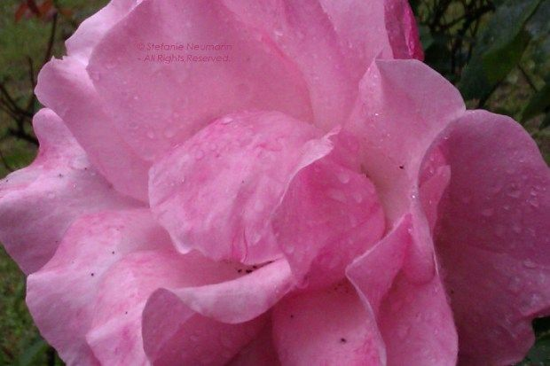 "JUST BE by Stefanie Neumann: ""When was the last time you did allow yourself to simply be?"" #KBFExercises 