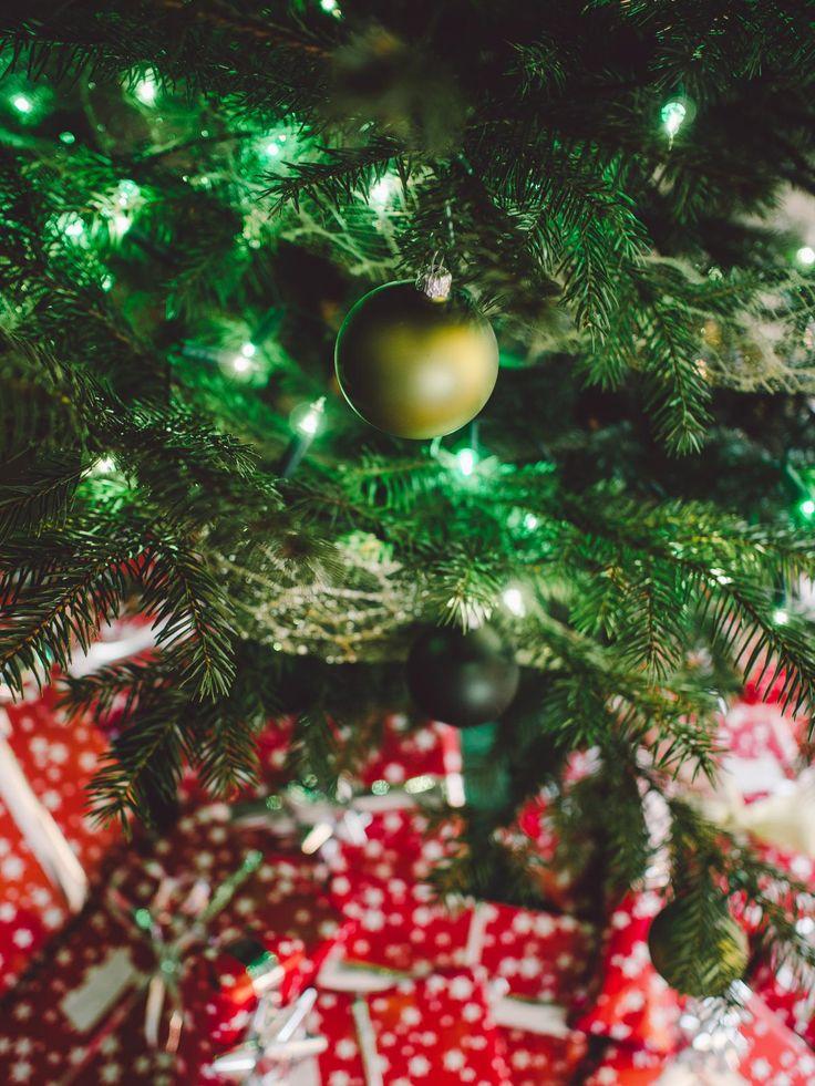 🌈 New free photo at Avopix.com - christmas tree lights    🆓 https://avopix.com/photo/23913-christmas-tree-lights    #orange #christmas #tree #fruit #food #avopix #free #photos #public #domain