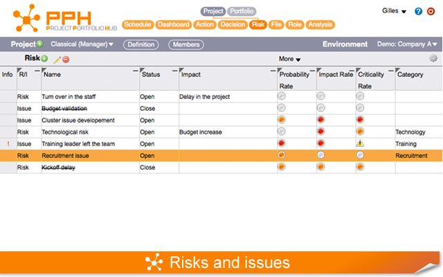 Risks and issues management
