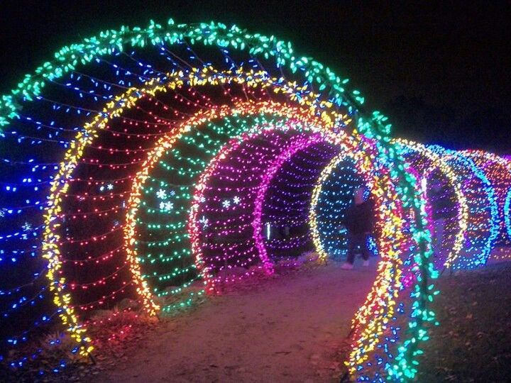 Doorway to the holidays love this picture green bay for Holiday lights botanical gardens