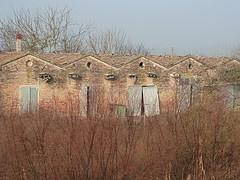 Argenta, Comuni di Ferrara, Italy (terra de minha avó paterna)