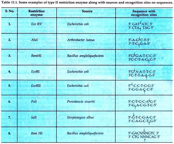 Examples Of Type Ii Restriction Enzyme Dna Technology Recombinant Dna Biotechnology