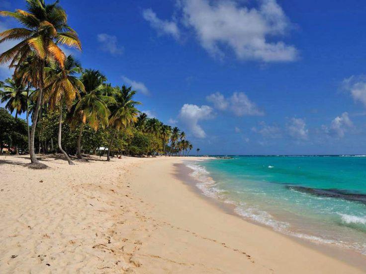 Plage de Petite-Anse, à Marie-Galante, en Guadeloupe.